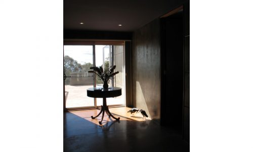 10 - Lake George House - Strine Design - Strine Environments - Best Canberra Builder - Green Architect Canberra