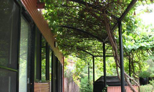 12 - Finniss Street House - Strine Design - Strine Environments - Best Canberra Builder - Green Architect