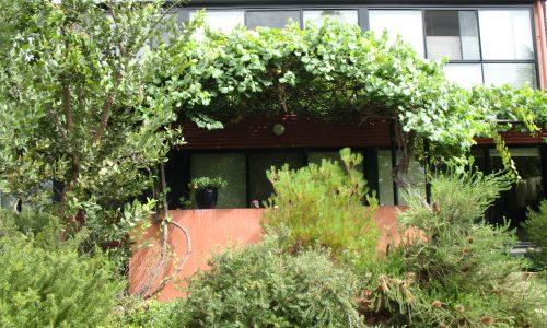 14 - Finniss Street House - Strine Design - Strine Environments - Best Canberra Builder - Green Architect