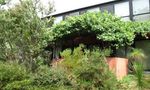 16 - Finniss Street House - Strine Design - Strine Environments - Best Canberra Builder - Green Architect