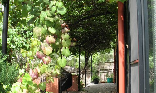 18 - Finniss Street House - Strine Design - Strine Environments - Best Canberra Builder - Green Architect