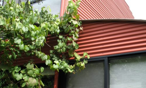 23 - Finniss Street House - Strine Design - Strine Environments - Best Canberra Builder - Green Architect